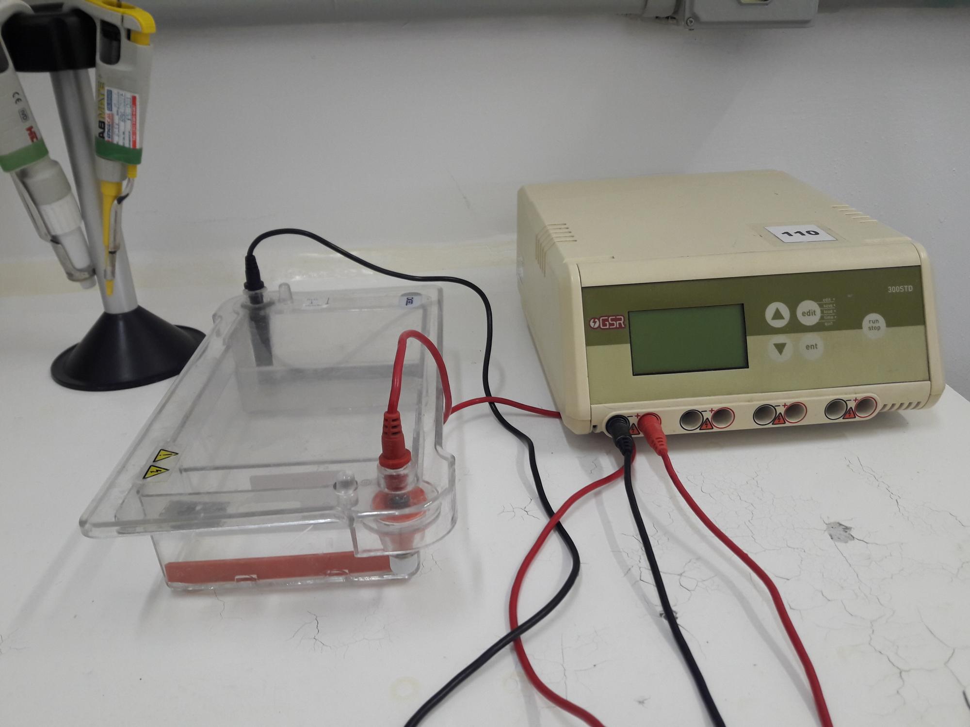 sistema_de_eletroforese